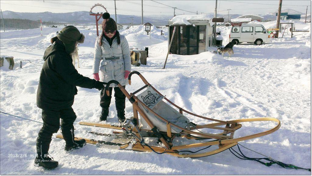 狗雪橇 (6)