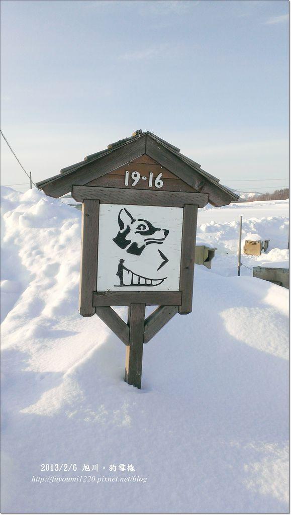 狗雪橇 (11)