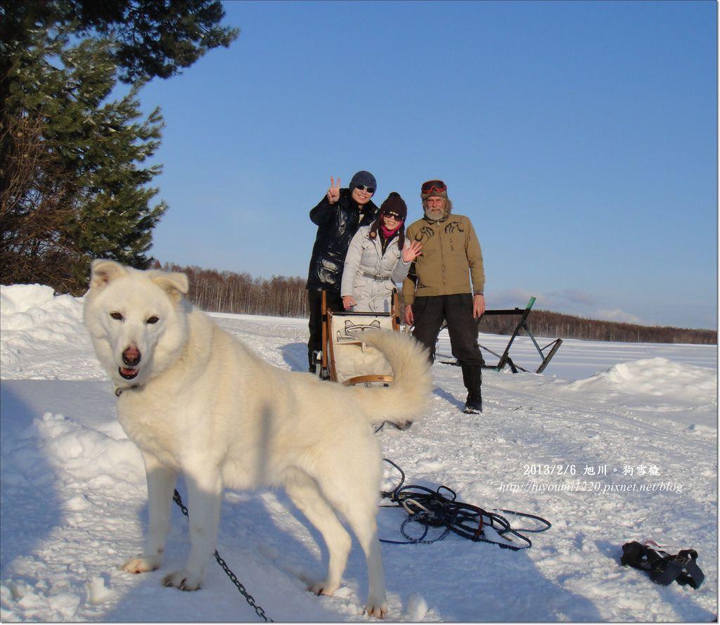 狗雪橇...