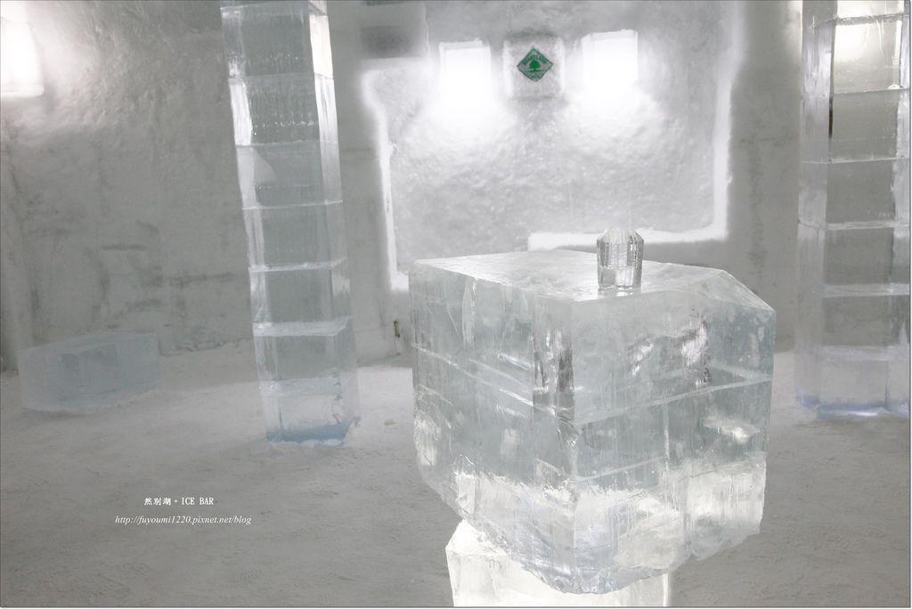 Ice Bar (7)
