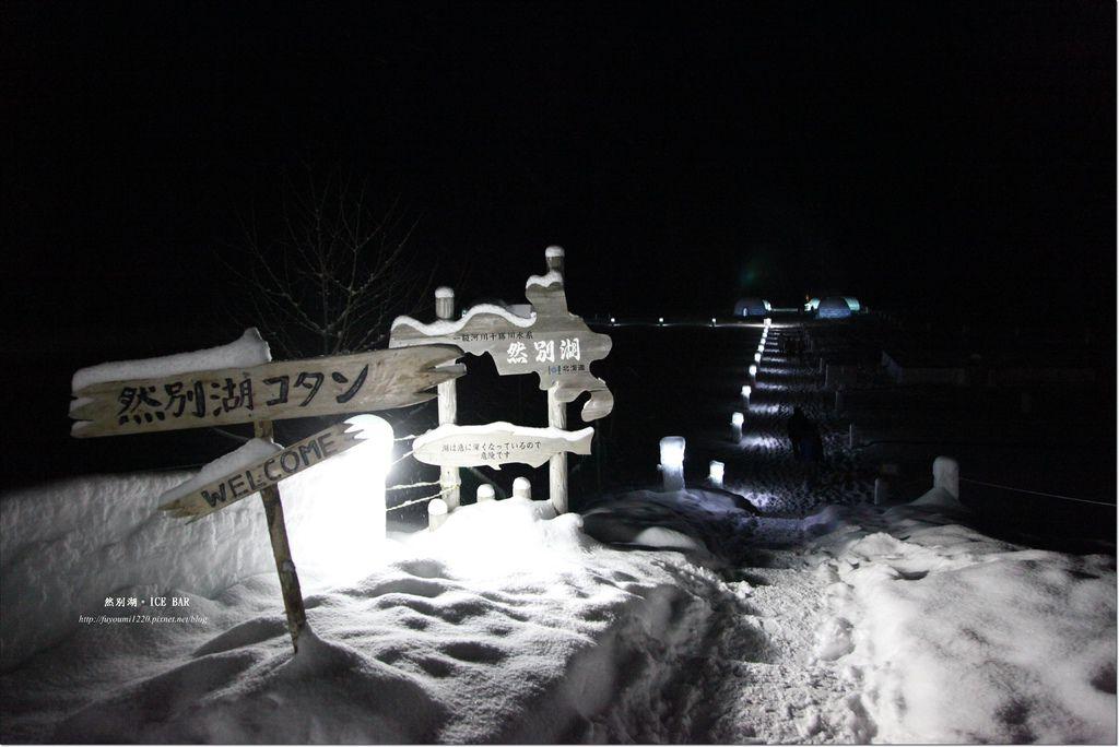 Ice Bar (13)