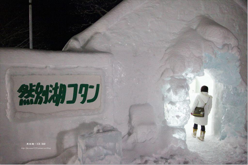 Ice Bar (14)
