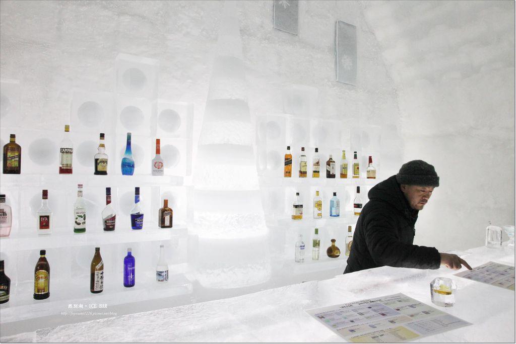 Ice Bar (16)