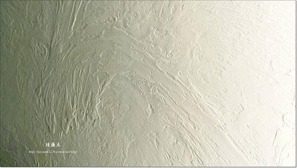 珪藻土 (6)
