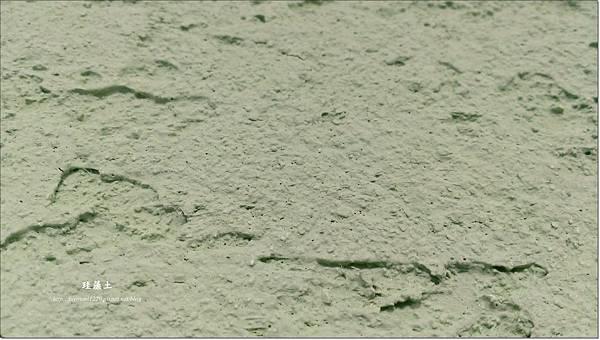 珪藻土 (13)