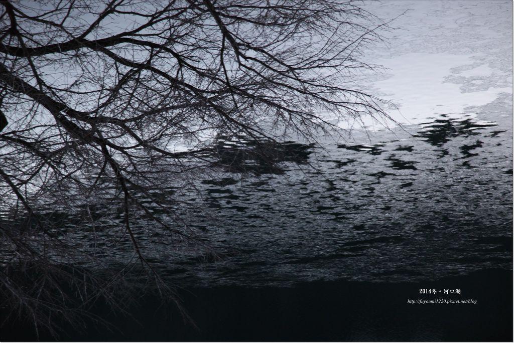 冬遊河口湖 (11).JPG