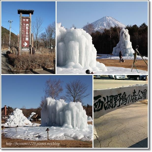 冬遊富士五湖 (13).jpg
