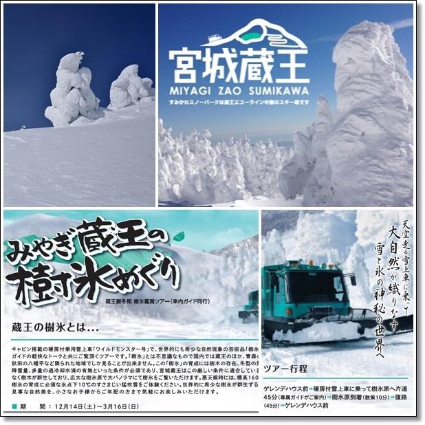 宮城藏王樹冰賞 (40).jpg