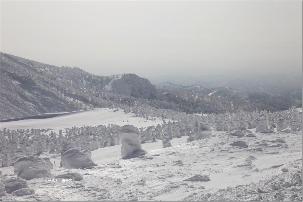 宮城藏王樹冰.JPG