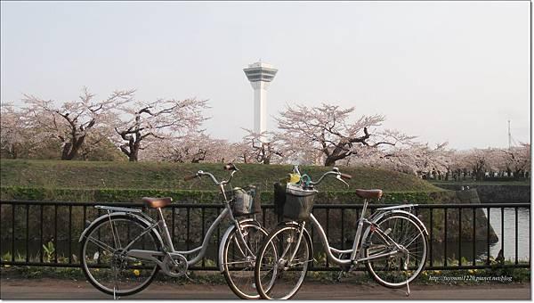 函館漫遊0507 (5).JPG