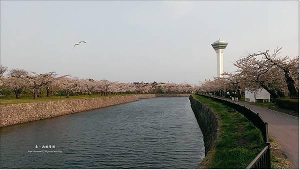 函館漫遊0507 (14).jpg