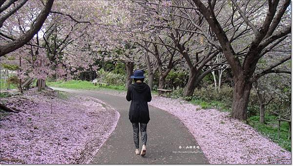函館漫遊0510 (4).JPG
