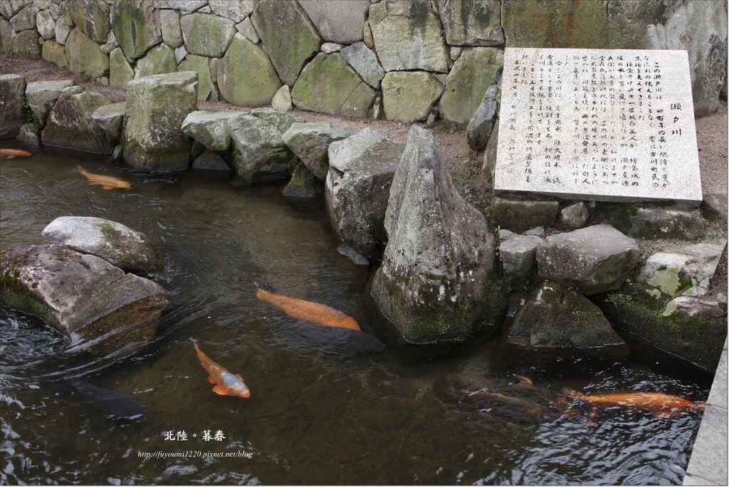 飛驒古川散策 (11).JPG