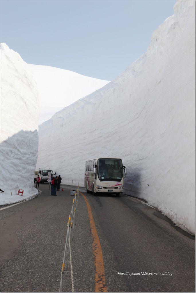 立山雪之大谷 (8).JPG
