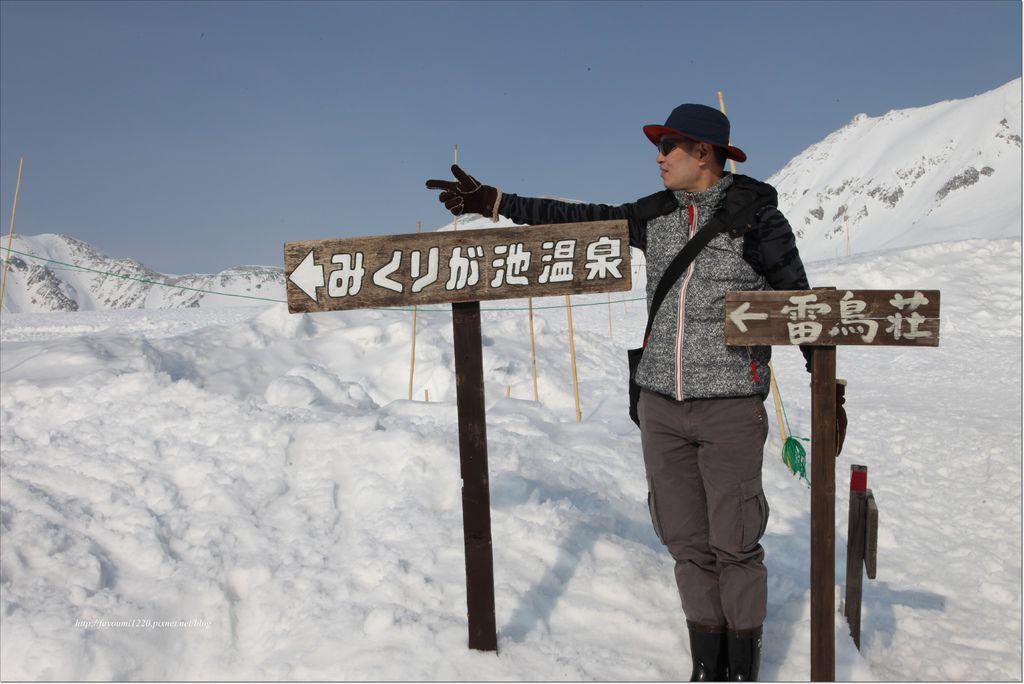 立山雪之大谷 (17).JPG