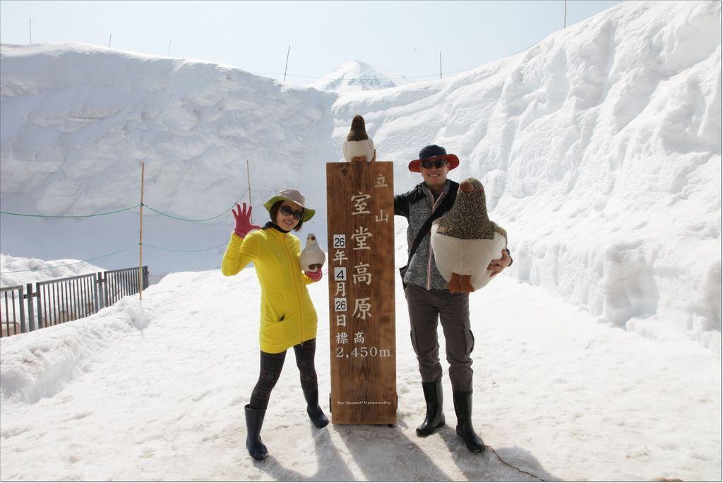 立山雪之大谷 (19).JPG