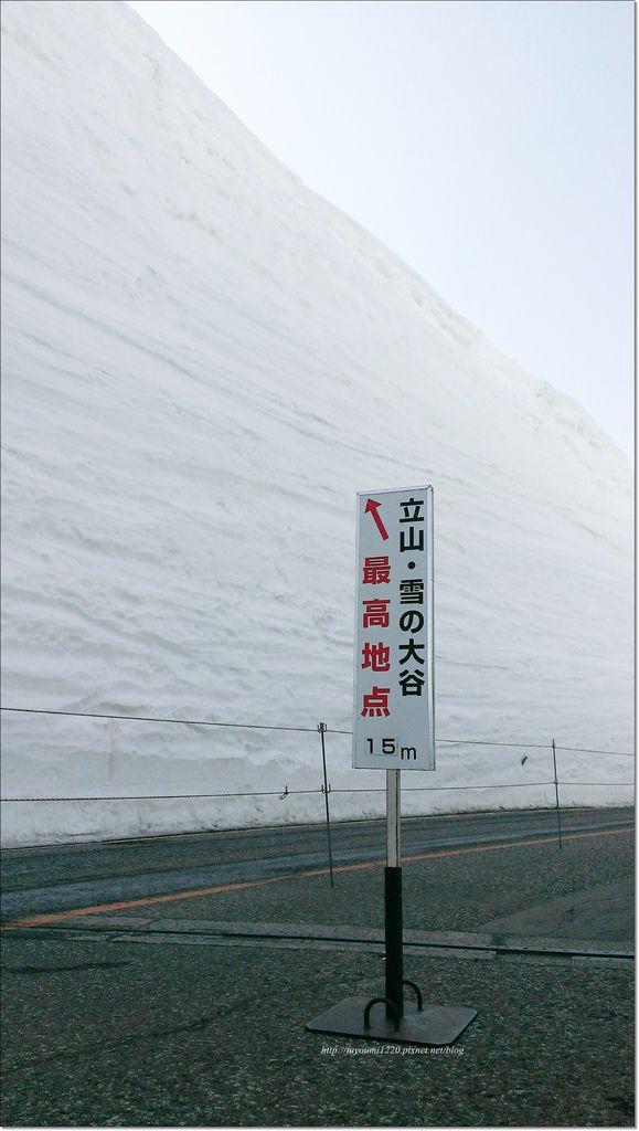 立山雪之大谷 (23).jpg