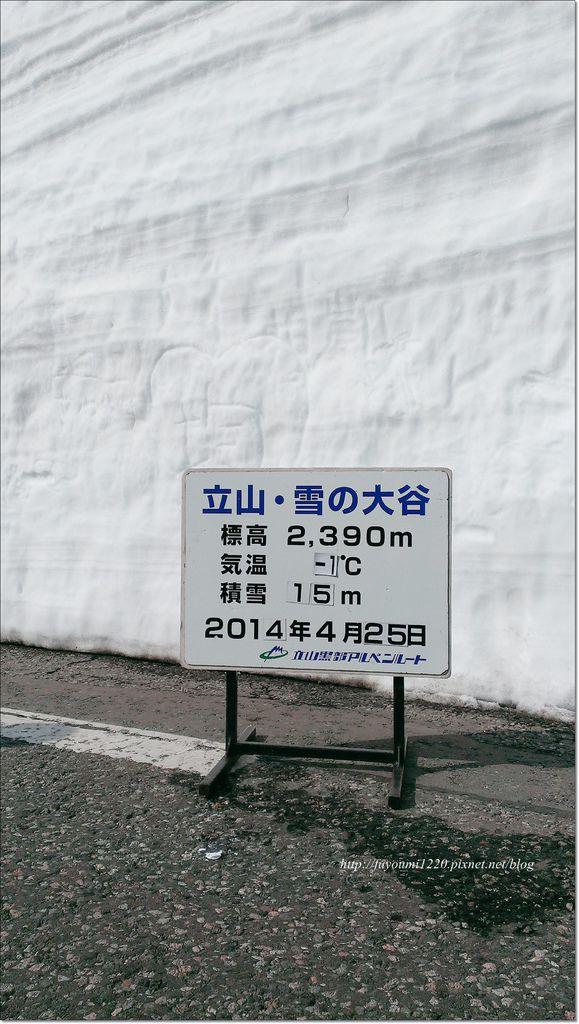 立山雪之大谷 (24).jpg