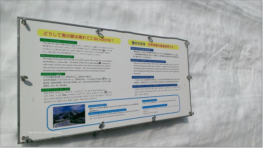 立山雪之大谷 (25).jpg