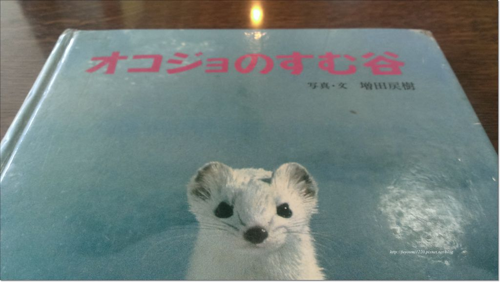 遇見雷鳥 (5).jpg