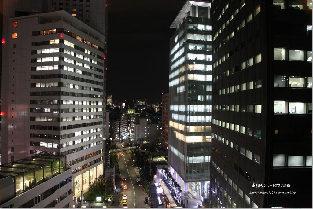 ホテルサンルートプラザ新宿 (7).JPG