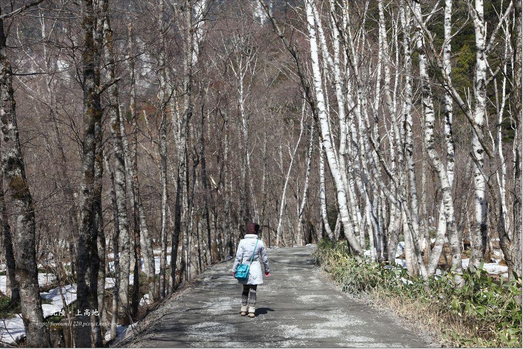 Go hiking (3).JPG