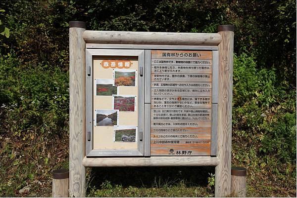 銀泉台赤岳健行 (23).JPG
