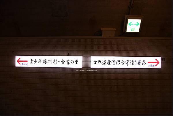 北陸秋楓 (17).JPG