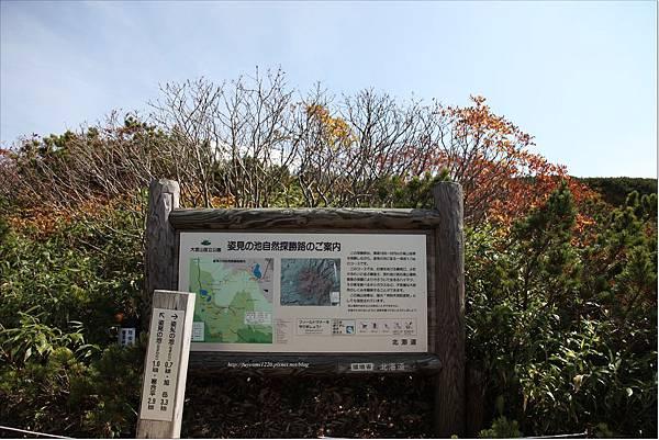 旭岳紅葉 (11).JPG