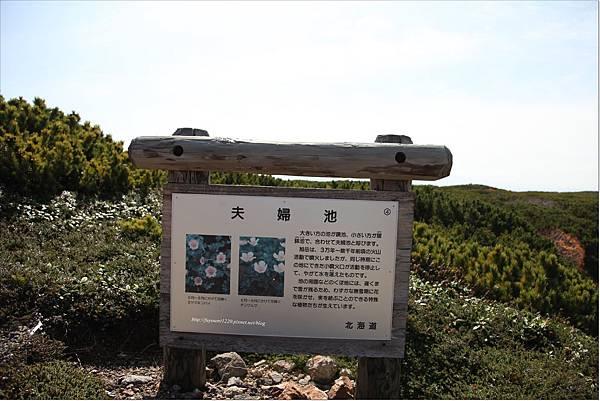 旭岳紅葉 (26).JPG