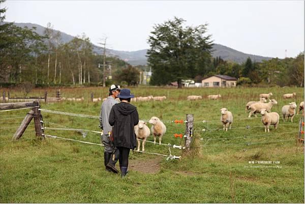 YORKSHIRE FARM (8).JPG