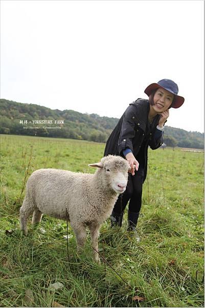 YORKSHIRE FARM (24).JPG