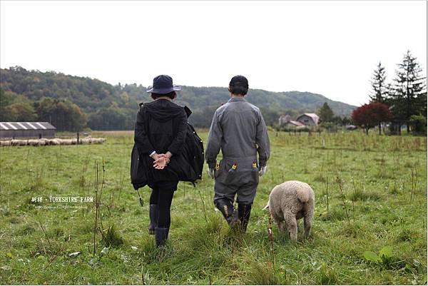 YORKSHIRE FARM (27).JPG
