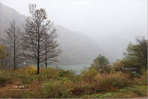 白水湖 (10).JPG
