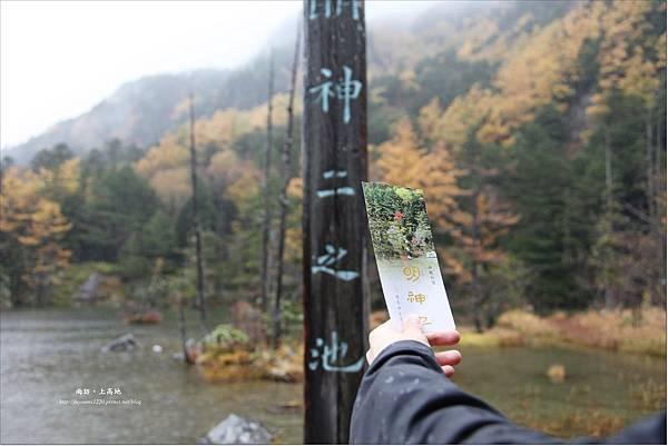 雨訪上高地-河童橋-明神池(55).JPG
