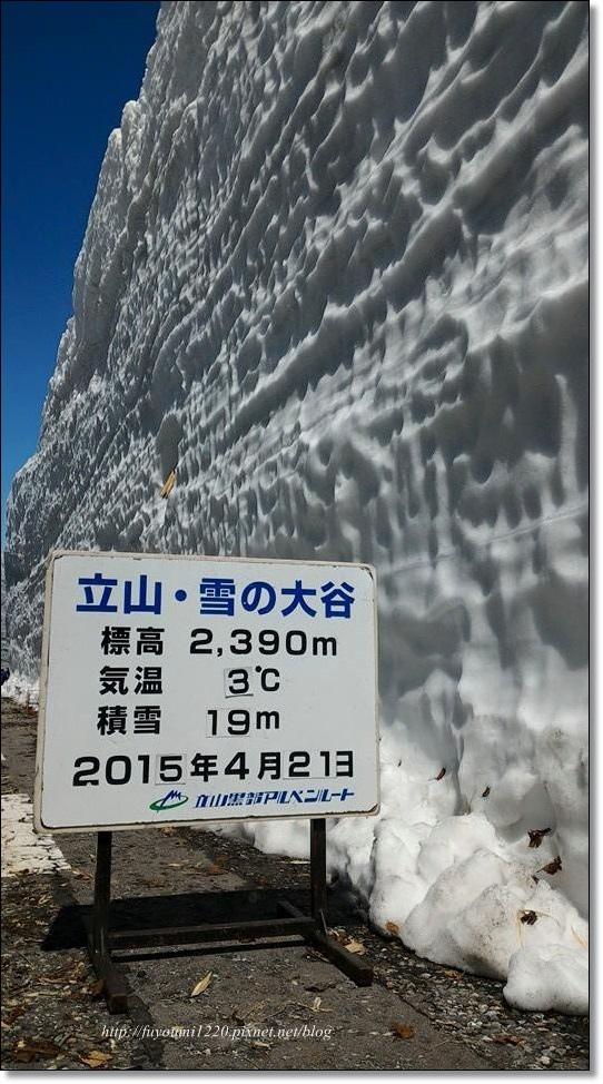 2015雪的大谷.jpg