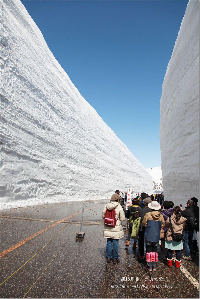 2015暮春立山雪的大谷 (7).JPG