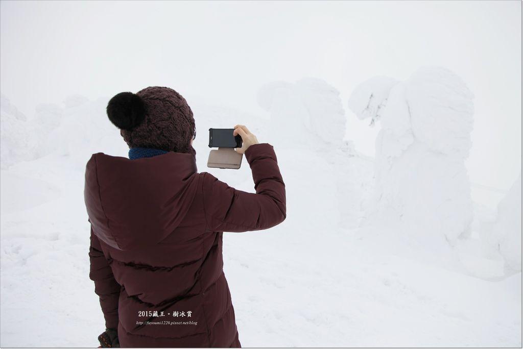 2015藏王樹冰賞 (19).JPG