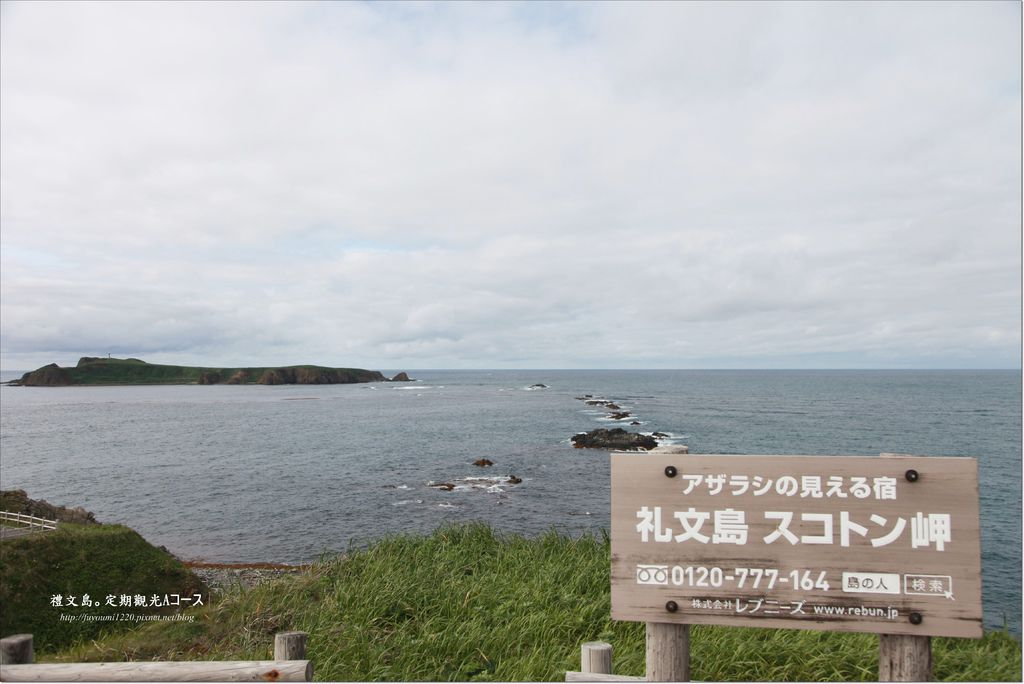 禮文島定期觀光巴士 (11).JPG