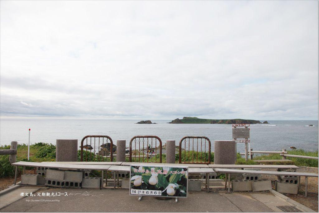 禮文島定期觀光巴士 (13).JPG