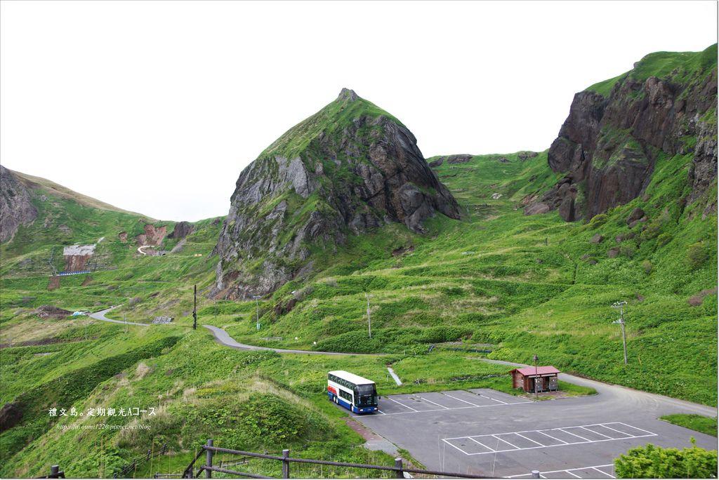 禮文島定期觀光巴士 (14).JPG