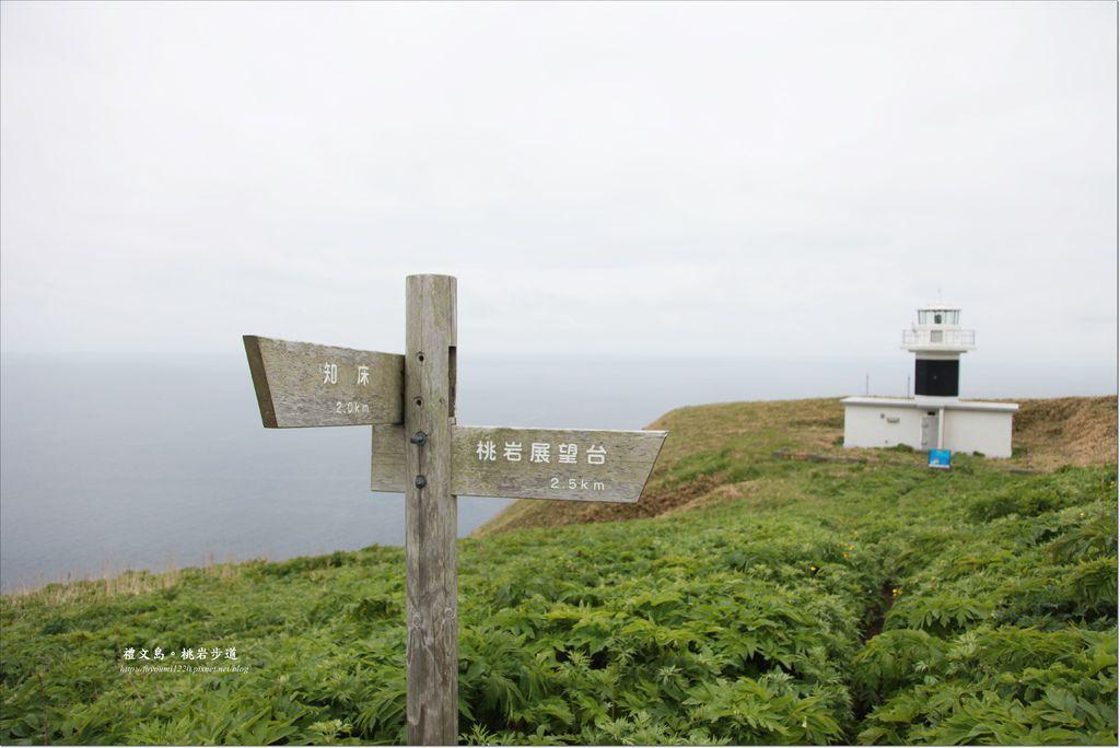 禮文島桃延步道 (11).JPG
