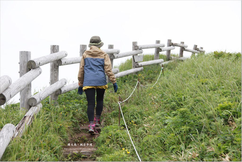 禮文島桃延步道 (12).JPG
