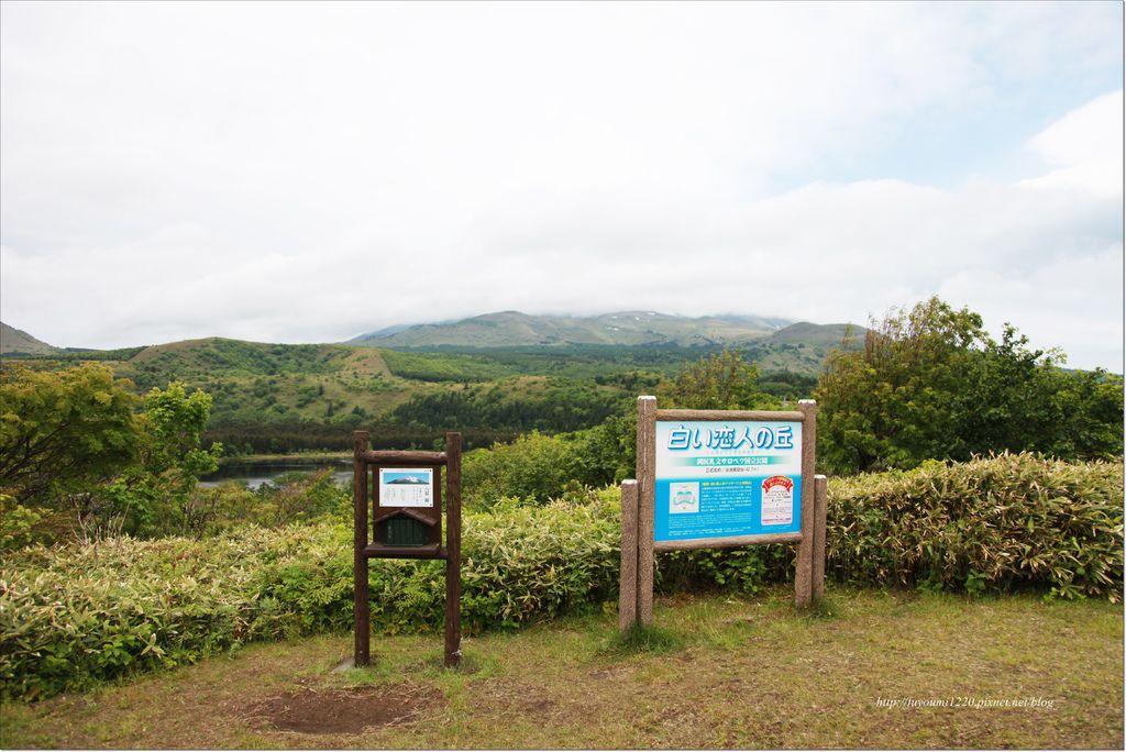 利尻島 (5).JPG