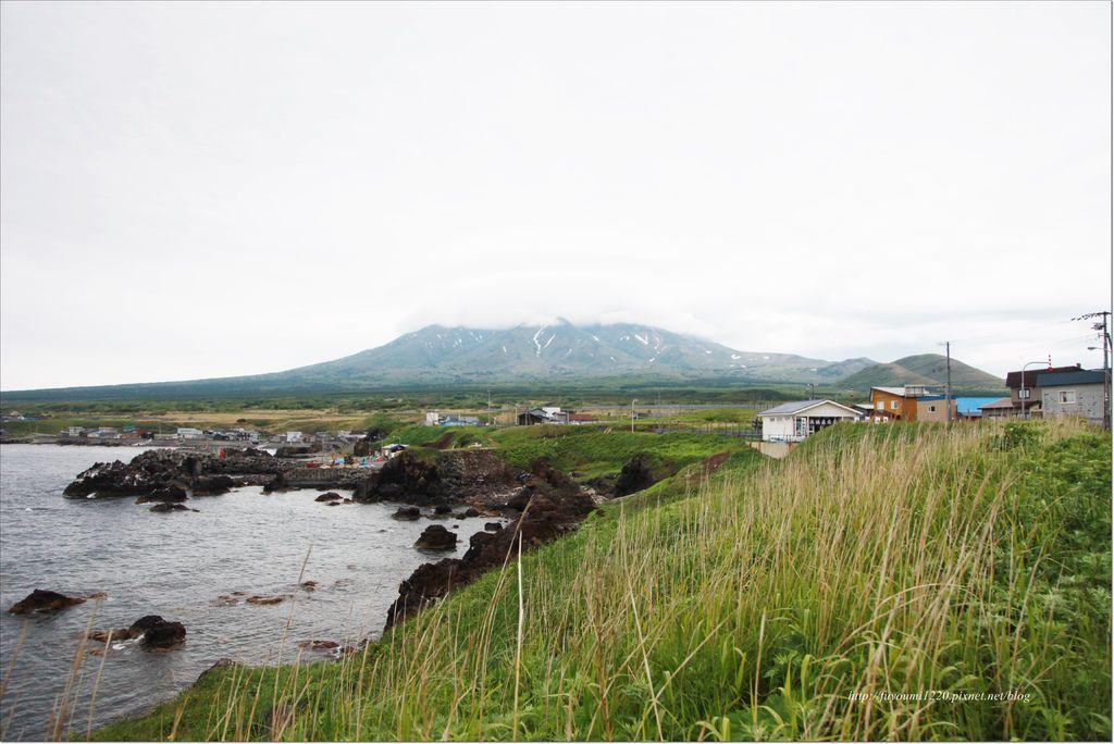 利尻島 (11).JPG