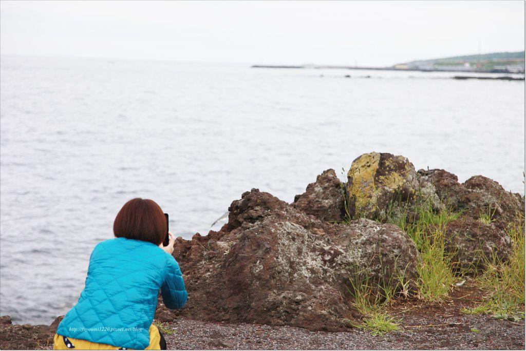 利尻島 (17).JPG