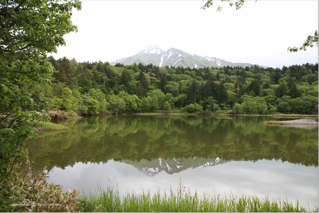 利尻島 (22).JPG
