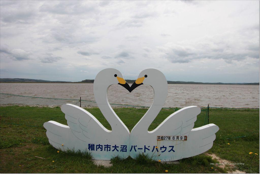 稚內漫遊 (2).JPG