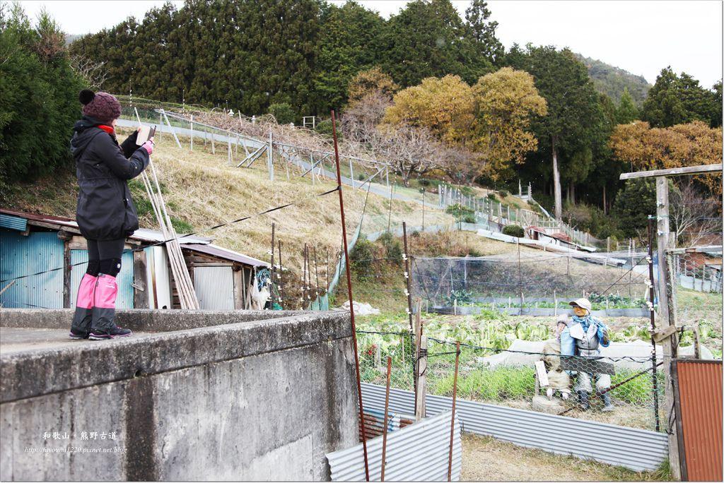熊野古道散策 (8).JPG