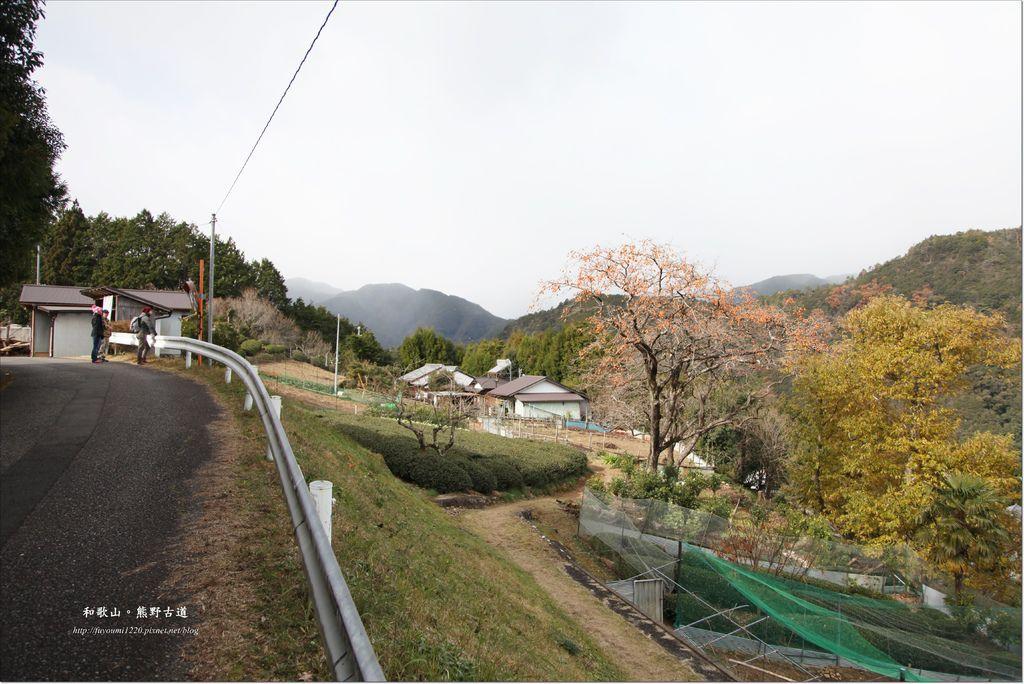 熊野古道散策 (17).JPG